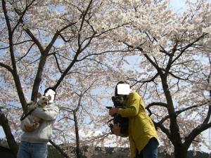 2008_0413画像0005