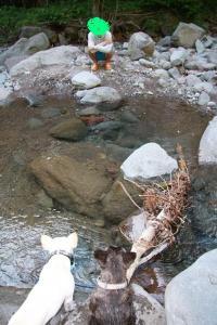 川遊びコリキIMG_0995