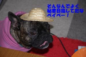 IMG_0769.jpg