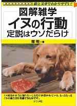 blog犬の行動
