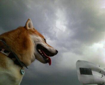 なに~?この雲