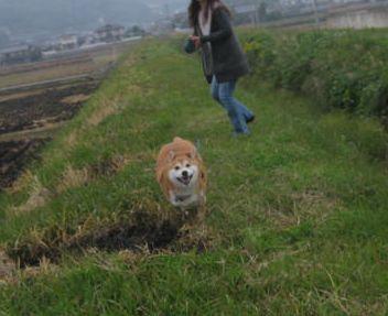 小夏・・・狂い走り 7