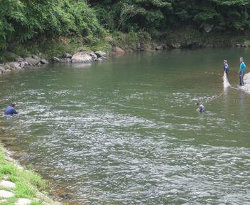 魚を捕るおっさんたち