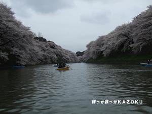 080330-hamami3.jpg