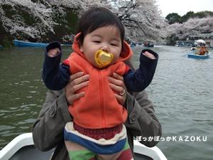 080330-hanami2.jpg