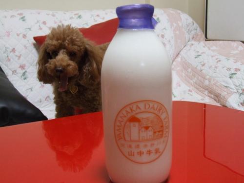 s-牛乳 001