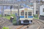 DSC_1145-2009-8-23.jpg