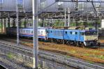 DSC_1171-2009-8-24.jpg