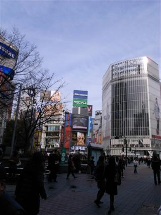忙しいすぐるな・・・渋谷