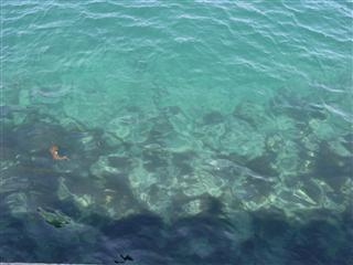 日本海のブルー