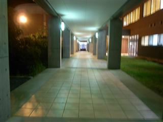 大学の通路