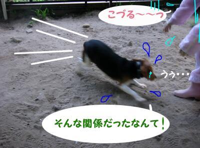 20071101020923.jpg