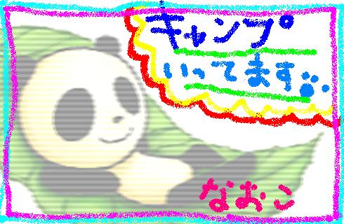 panda75_k.png