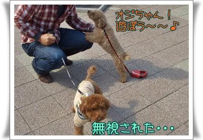 20090330blog2.jpg