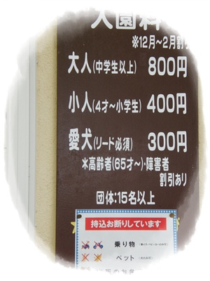 20090505blog5.jpg