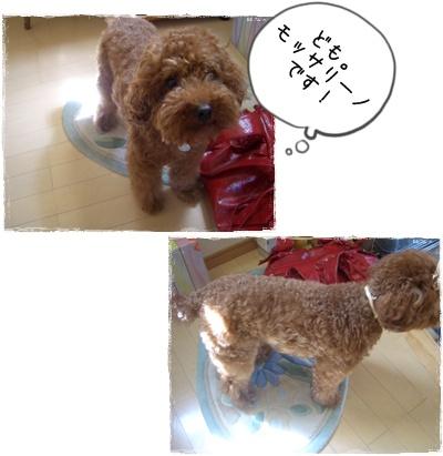 20090530blog1.jpg