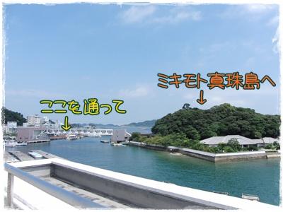 20090828blog3.jpg