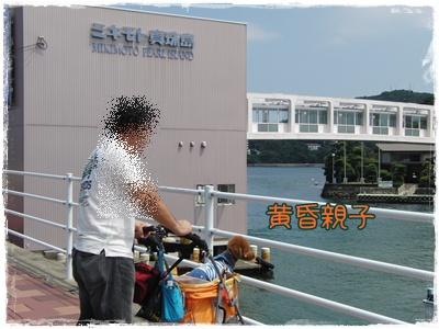20090828blog4.jpg