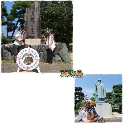 20090828blog9.jpg