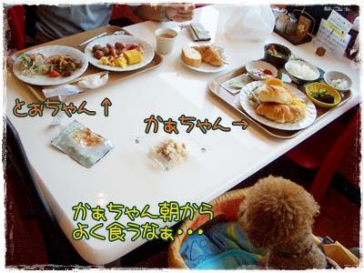 20090829blog2.jpg