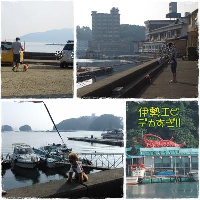 20090829blog4.jpg