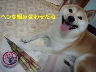 根曲がり竹とサバ缶