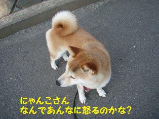 なんで怒るの?