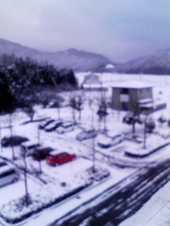 雪。美浜090115_1609~001