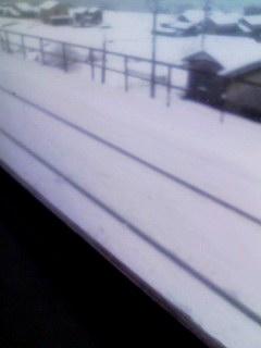 雪。線路090115_1206~001