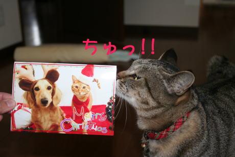IMG_4377トラコ