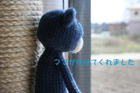IMG_5104青色1号2