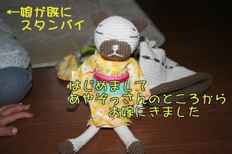 IMG_5673編み猫