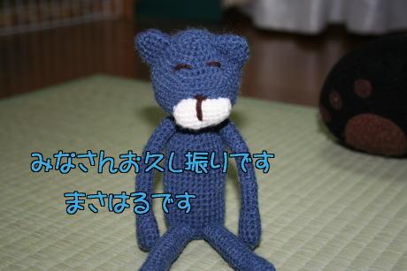 IMG_6349あみねこ1