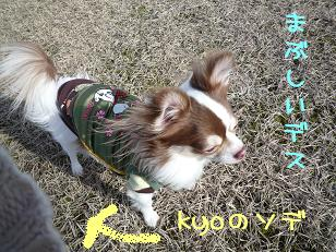 kyoのソデ