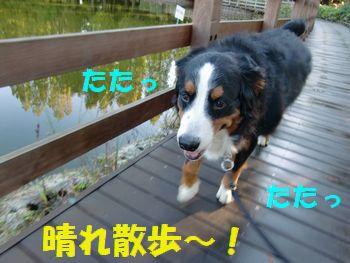 いい天気~!台風行っちゃったね~!