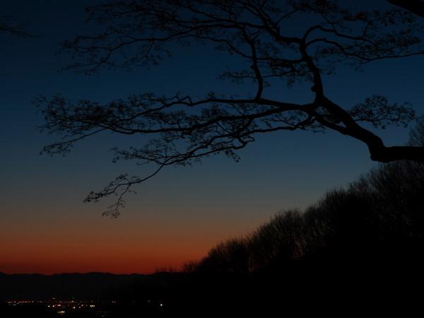 太平山の夕暮れ