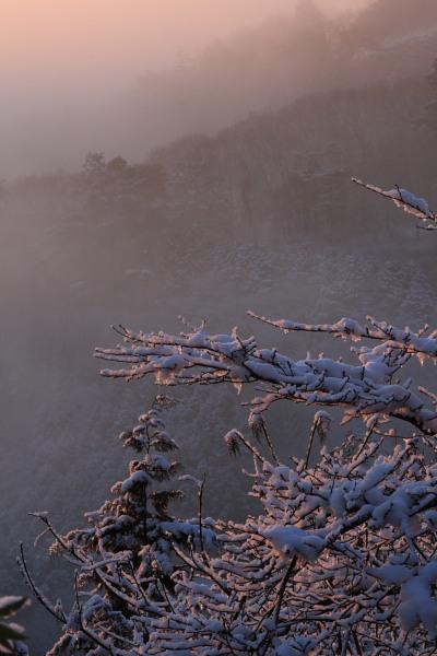 太平山雪景色2