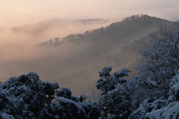 太平山雪景色3
