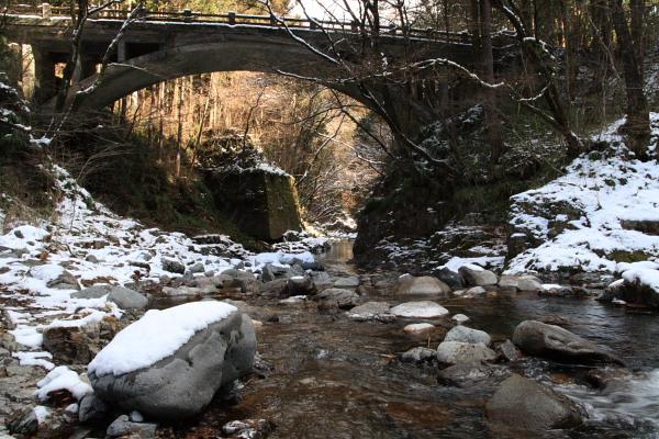 小来川の黒川3