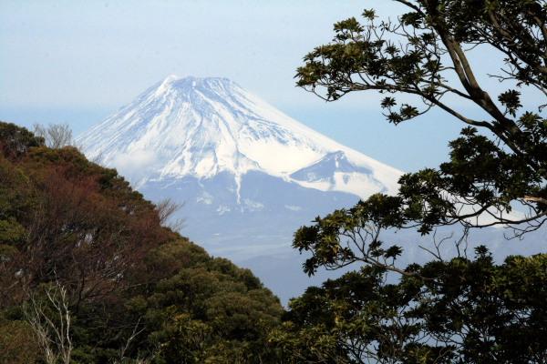 沼津からの富士