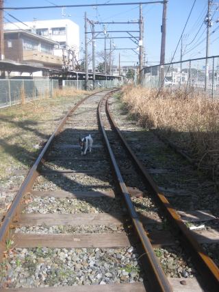 線路は続くよ