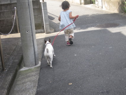 ゆーづと散歩