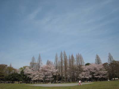 aki_33.jpg