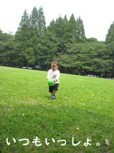 aki_64.jpg