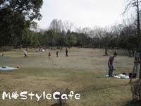 picnic_00.jpg