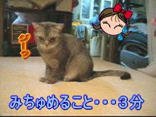 20060912170323.jpg