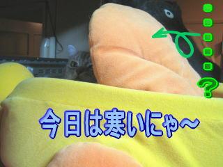 20060914174640.jpg