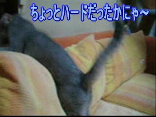 20060925144652.jpg