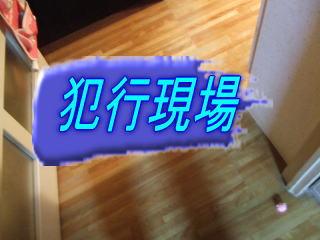 20060926082739.jpg