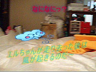 20061013232719.jpg